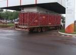 Unidade da BRF em Rio Verde, no sudoeste de Goiás (Foto: Reprodução/ TV Anhanguera)
